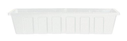 Novelty Plastic Box -Pp18w