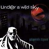 Under A Wild Sky by Phoenix Down