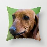 Wheaten Terrier Needlepoint - 8