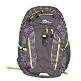 High Sierra Riprap Lifestyle Backpack Padded for Laptop with Deluxe Organizer