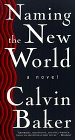 Naming New World, Calvin Baker, 031218140X
