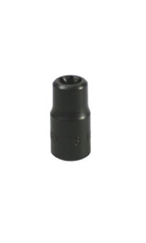 Lisle 26800 1/4-Inch Drive External Torx Socket E-8 Lisle Corporation