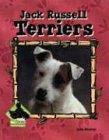 Jack Russell Terriers, Julie Murray, 159197321X