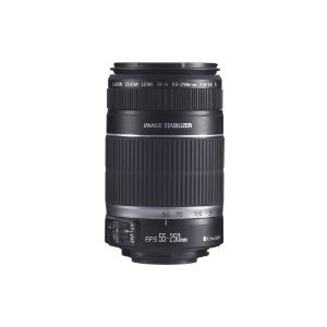 Canon EF-S 55-250mm f/4.0-5.6 IS Telephoto Zoom Lens for Canon Digital SLR Cameras with Lens Cleaning Kit