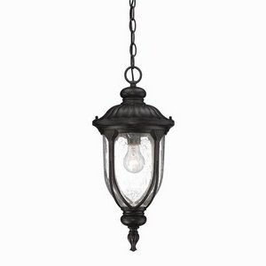 Acclaim 2216BC Laurens Collection 1-Light Outdoor Light Fixture Hanging Lantern, Black Coral