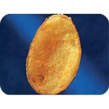 Lamb Weston Natural Baked Skin Potato Fry -- 200 per case.