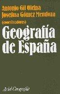 Descargar Libro Geografia De España Antonio Gil Olcina