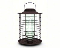(More Birds Caged Vintage Glass Songbird Feeder with Feeding Tray, 1.5-Pound Seed Capacity)