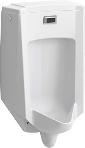 (KOHLER 2590-0 Bardon Urinal White)