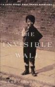 Read Online The Invisible Wall pdf epub