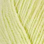 (Plymouth (1-Pack) Encore Worsted Yarn Green 0450-1P)