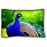 Opus Queen Bed - Generic Personalized ( Animal Peacock Opus Bird Peacock Animal Highres ) Pillowcase Cushion Cover Design Standard Size 20x30 inches One Sides suitable for X-Long Twin-bed PC-Bluish-34229