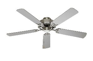 Transglobe Lighting F-1001 BN Ceiling Fan, Brushed Nickel Finished