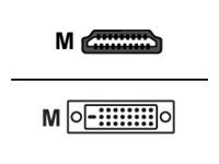 VIEWSONIC HDMI MALE TO DVI-D DUAL LINK MALE CABLE 1.8 METER