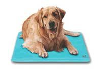 SoothSoft Canine Cooler Cooling Dog Bed – Medium, My Pet Supplies
