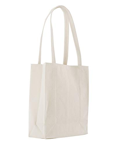 BAGGU Canvas Reusable Retail Tote, Nylon Shopping or Lunch Bag, Recycled Canvas