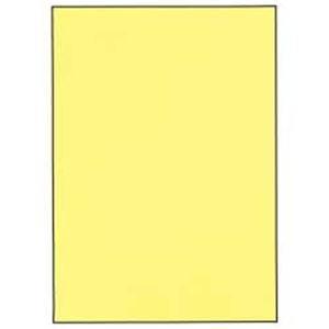 【まとめ買い】カラーペーパー【箱】 1箱(500枚×5冊) クリーム B4   B07PD259CY
