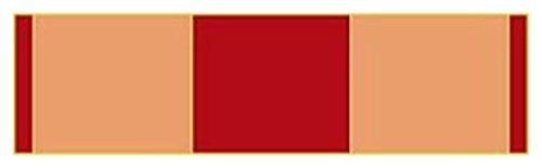 - Marine Corps Expeditionary-LAPEL PIN