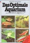 Das optimale Aquarium