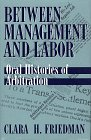 Between Labor and Management, Friedman, Clara H., 0805791019