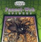 Funnel Web Spiders (Dangerous Spiders)