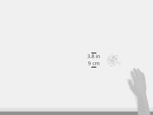 CraZy TACKz 40pc Clamshell Push Pin Hook .5 x .5 x 1.125 Clear 00309-36tackz Round /& Clear
