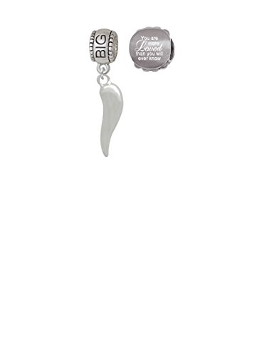 Good Luck Italian Horn Big Sister Charm Bead with You Are More Loved Bead (Set of (Big Sister Italian Charm)