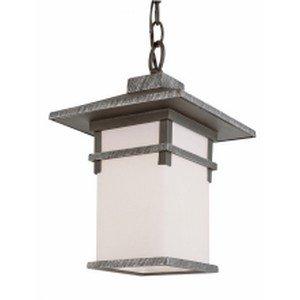 Trans Globe Lighting 40024 SWI 1-Light Hanging Lantern, Swedish Iron