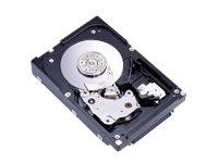 Enterprise MAW3300NP - Hard drive - 300 GB - internal - 3.5