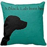 Black Lab Lives Here Cushion Throw Rc4df14a916e5456289358c3f6c105b13 I5fqz 8byvr Pillow (Black Lab Throw)