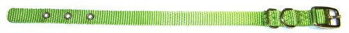 Hamilton 5/8-Inch by 16-Inch Single Thick Nylon Deluxe Dog Collar, Lime Green