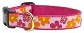 product image for Up Country Sm Wide Flower Power Collar Quick Release