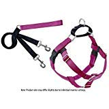 2 Hounds Design Freedom No-Pull Dog Harness Training Package, Small, Raspberry by 2 Hounds Design