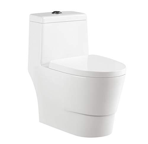 One Piece Toilet 12