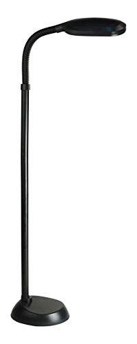 Black Functional Floor Lamp from The Aptos Collection Black