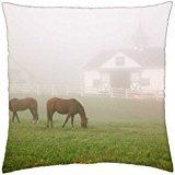 "Manchester Horse Farm Lexington Kentucky - Rainy man Pillow Cover Case (18"" x 18"")"
