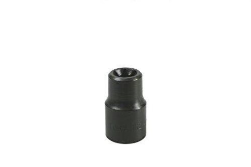 Lisle 26830 E-12 Torx Socket