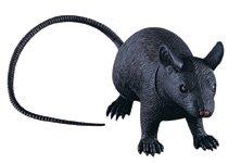 Rubie's RUB1800ACC Jumbo Rubber Rat