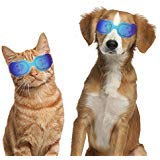 Dogs Goggles Pet Motorcycle Sunglasses Waterproof Windproof UV Protection for Small Dogs Doggy Puppy and Cats Glasses - Vet Recommended Eye Protection (Bright Blue) from JJunLiM