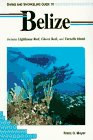 Diving and Snorkeling Guide to Belize: Includes Lighthouse Reef, Glover Reef, and Turneffe Island (Lonely Planet Diving & Snorkeling Guides) (Best Diving In Belize)