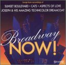 Broadway Now! Vol. 1