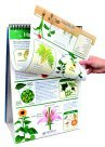 Newpath Science Curriculum Mastery Flip Chart44; Grade 4