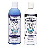 South Bark's Blueberry Facial & Bluberry Clove Conditioner 12oz