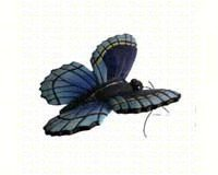Clark Collection CC52035 Blue Butterfly