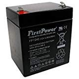 FirstPower 12V 4AH Battery for GE Security Alarm CADDX NETWORX -