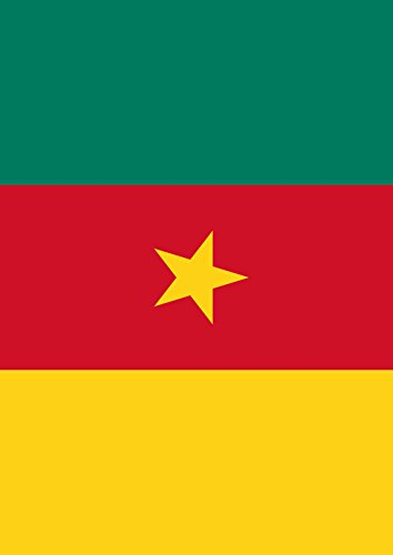 lag of Cameroon 12.5 x 18 Inch Decorative Country Nation Garden Flag ()