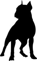 Boston Terrier Dog Stencil - 36 inch (at longest point) - 7.5 mil standard