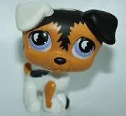 Littlest Pet Shop Jack Russell Terrier -