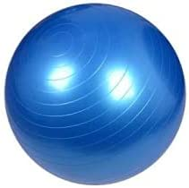 PURMUSCLE Stability Anti-Burst Yoga Ball Supports 1100 lbs, Exercise Ball Chair with Quick Pump