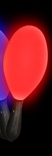 Light Up Flashing Maraca - Tons of fun